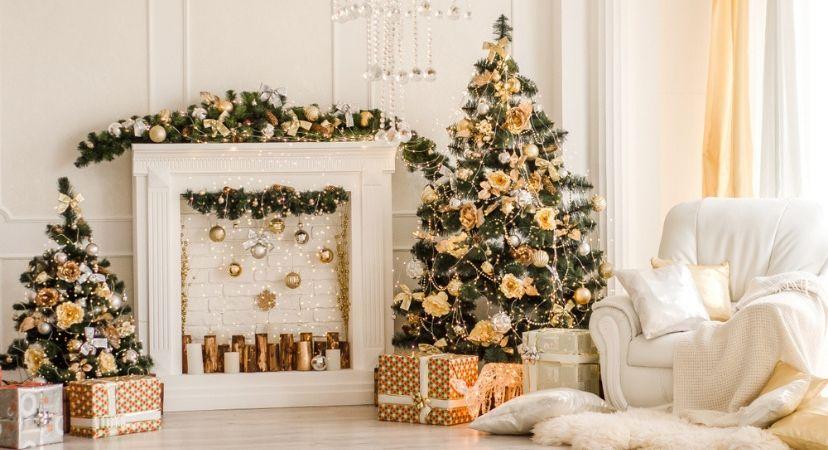 Kerst_Groencentrum Hoogeveen