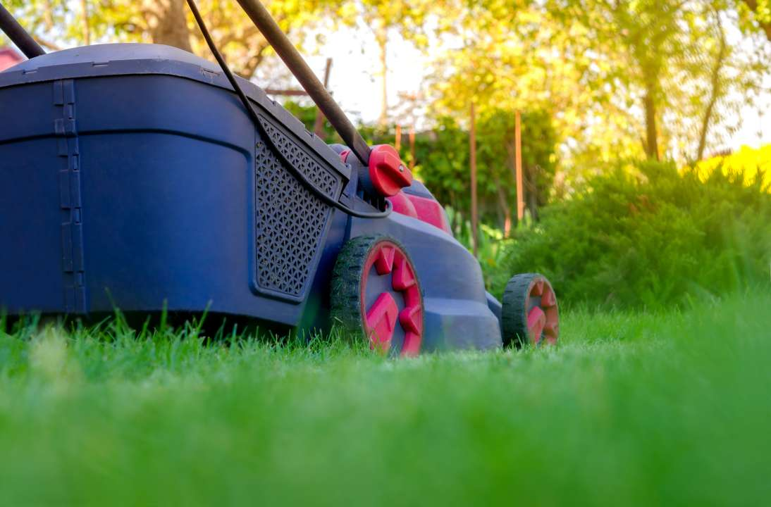 grasmaaier-kopen-hoogeveen